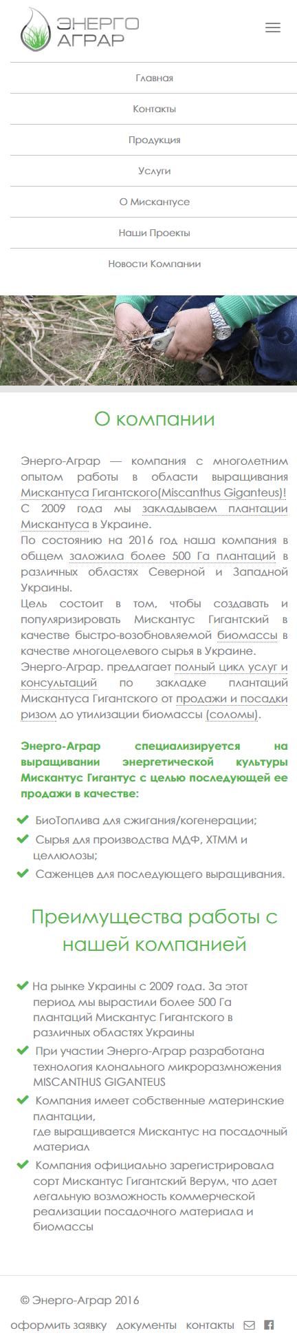 miscanthus-ukraine-com-04